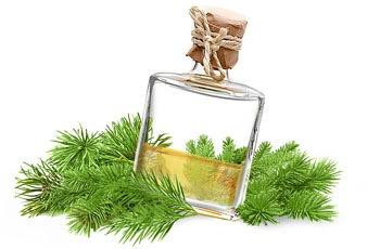 Экстракт терпентинного масла обладает противовоспалительным действием